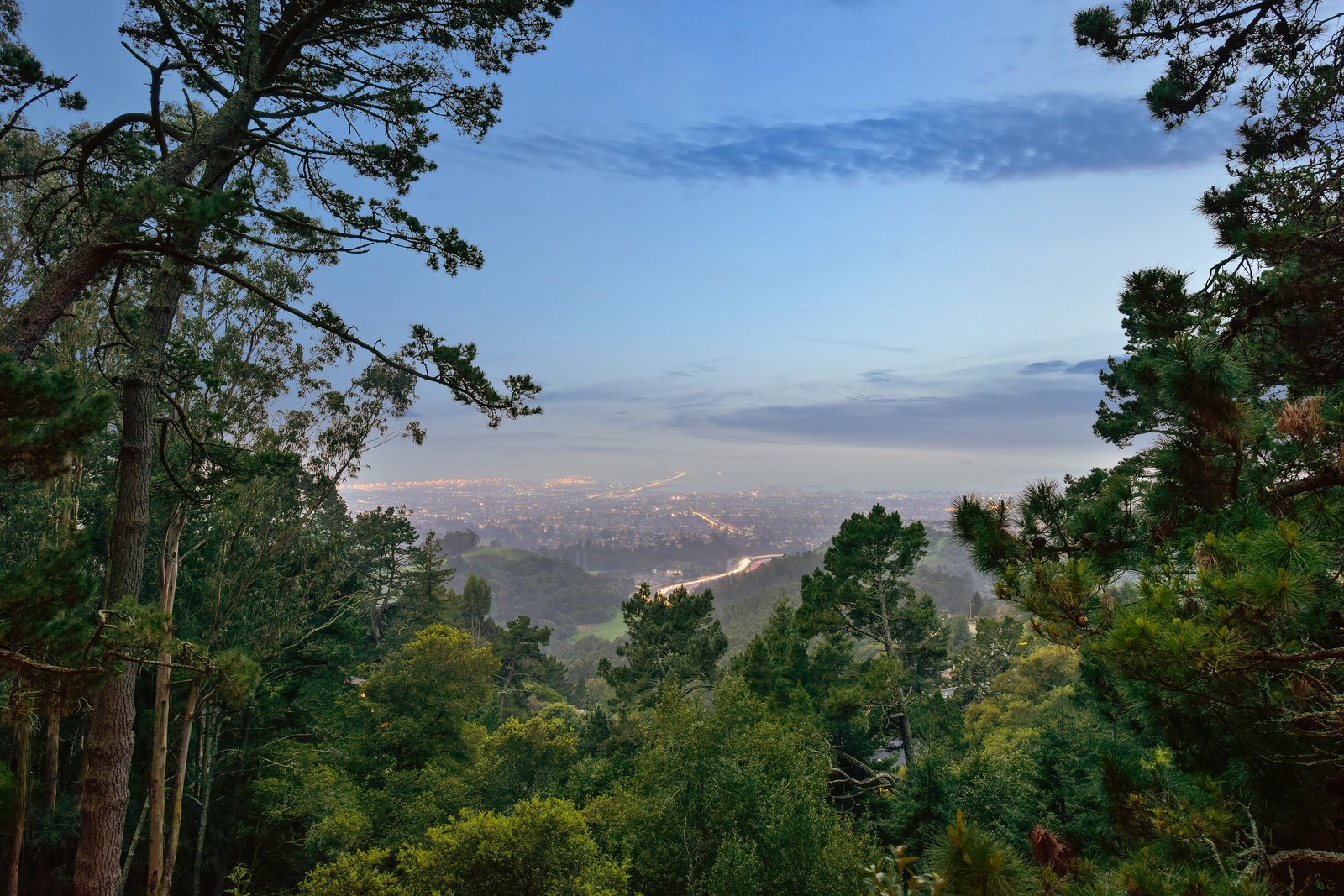 Outdoor and Trees The magnificent panoramic views of the San Francisco Bay include the Golden Gate and the Bay Bridge.  Photo 17 of 17 in This Knockout Midcentury in the Bay Area Will Run You $1.9M
