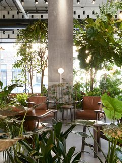 The cafe's central lounge area houses the lush indoor garden.