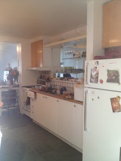 Here is a look at the kitchen before the renovation.