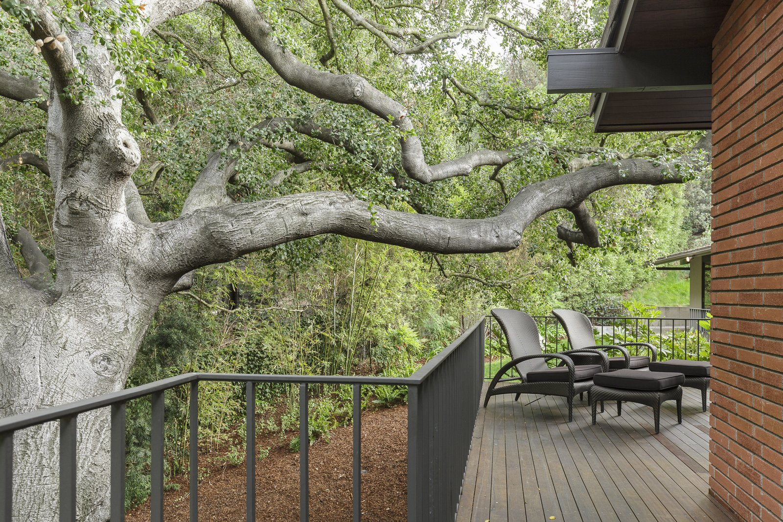 Outdoor, Trees, Side Yard, Wood Patio, Porch, Deck, and Large Patio, Porch, Deck Old-growth trees frame the deck.  Photo 9 of 17 in A Southern Californian Midcentury With Japanese Influences Asks $3.13M