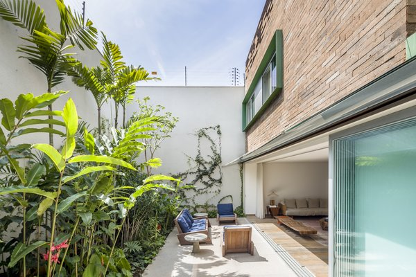 The garden effortlessly integrates the outdoors into the living space.
