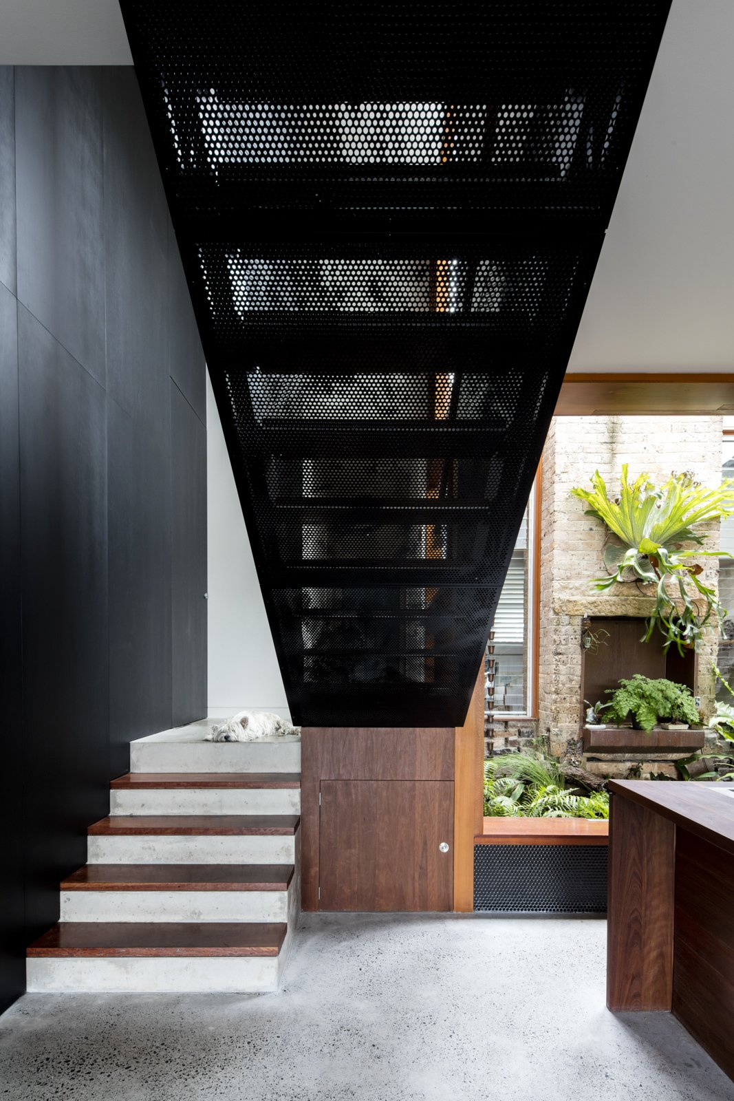 Staircase, Metal Tread, Wood Tread, and Concrete Tread Perforated black metal has also been used in the design of the staircase.     Photo 8 of 9 in A Dark Sydney Home Finds Light With a Unifying Expansion
