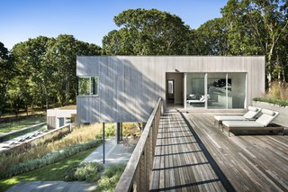 The roof deck forms a connector between the two cedar-clad volumes, while also providing additional outdoor space.