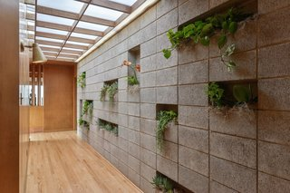 "A skylit entry hall features a concrete block ""living wall,"" as well as new oak flooring."