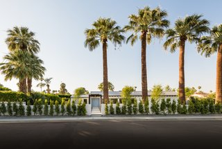 The home sits on a 16,000-square-foot lot which has been beautifully landscaped with rows of cacti and palm trees.