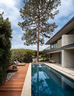 A tall tree perfectly aligns with the lap pool. The pool furniture is from Modernica's case study line.