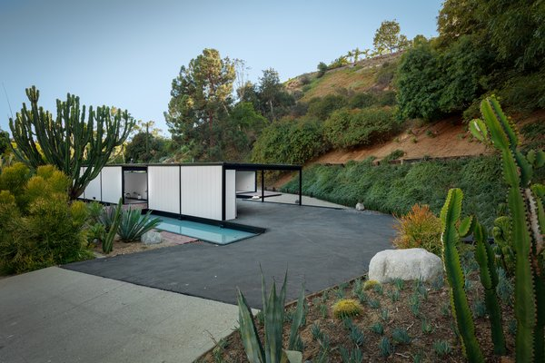 Nestled into its Laurel Canyon location, the home overlooks a shallow rectangular pool.