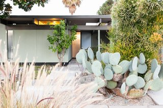 The home has been professionally landscaped with native drought-resistant plants.
