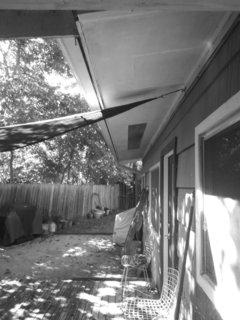 A view of the original backyard.