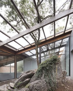 The outcrop of rock and a tree have been incorporated into the design of the home.