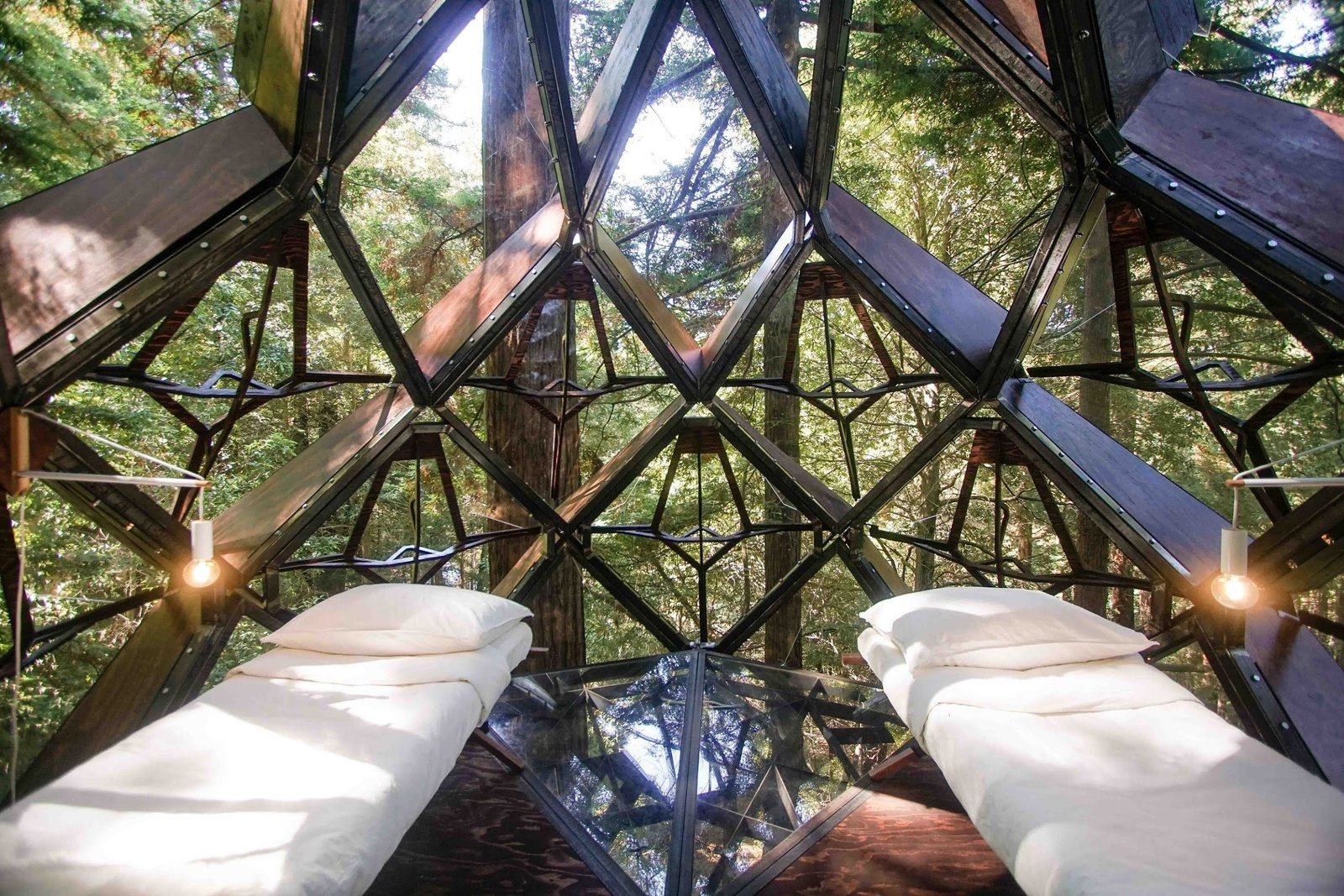 Pinecone tree house interior