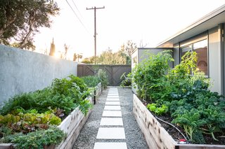 "Just off this kitchen is this gorgeous ""edible garden"" making garden-to-table dining a reality in your very own home."