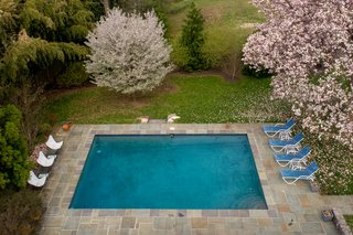 An aerial view of the perfectly framed pool.