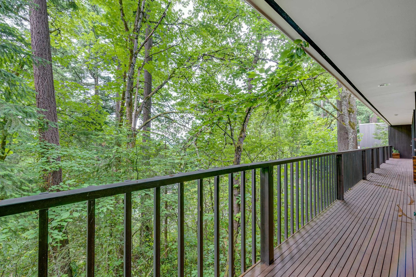 William Fletcher Portland Midcentury Home terrace
