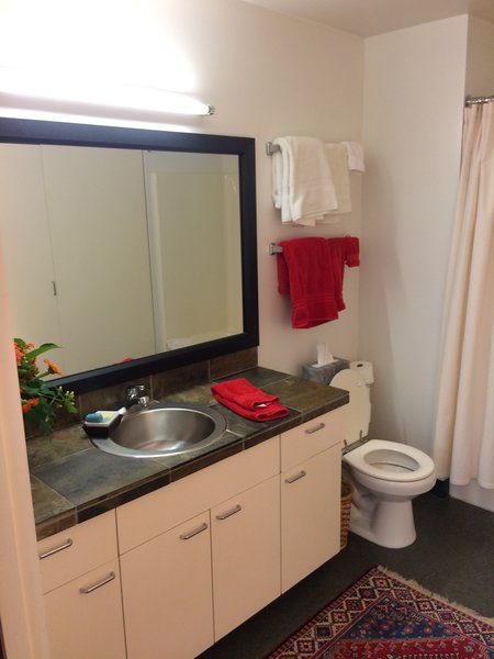 The dated bathroom was in need of updates, and the renovation was a chance to make it part of the renovation's singular cohesive vision for the unit.
