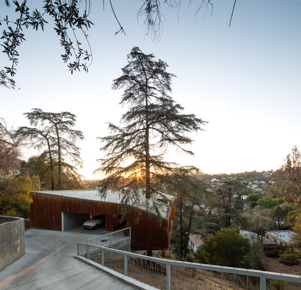 A Tree Grows Through the Center of This Echo Park Rental