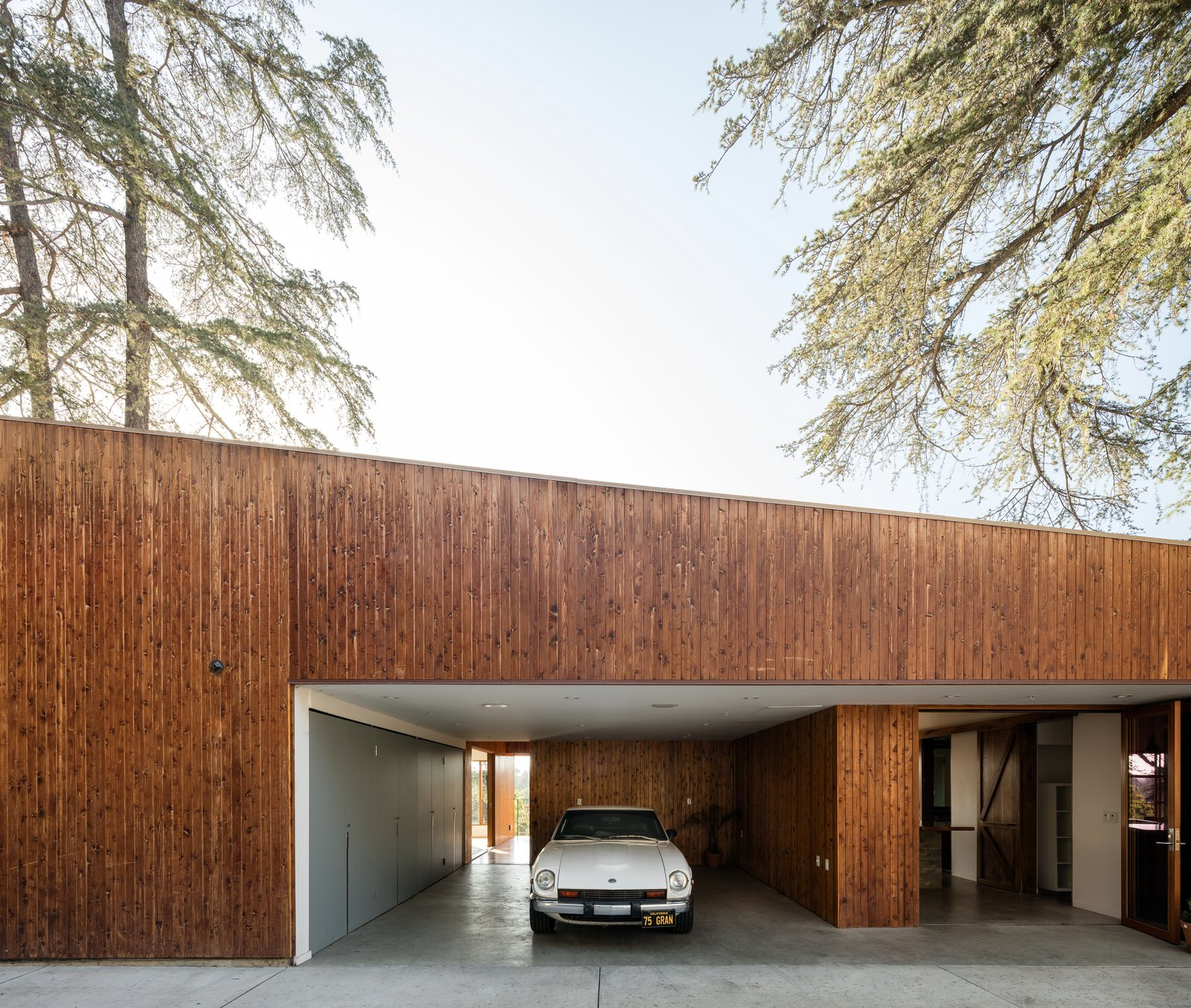House in Trees Anonymous Architects exterior
