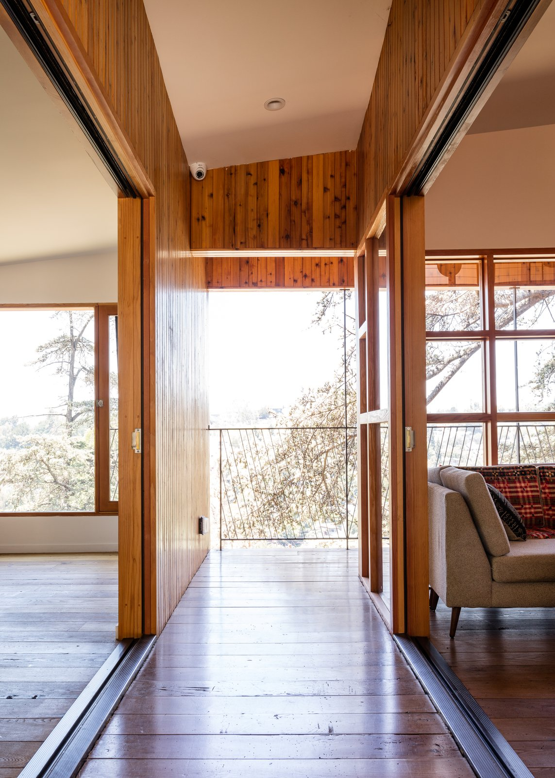 House in Trees Anonymous Architects hallway