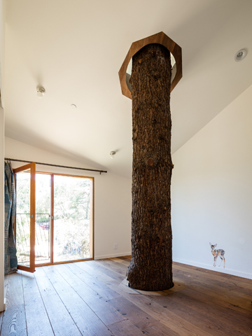 House in Trees Anonymous Architects bedroom