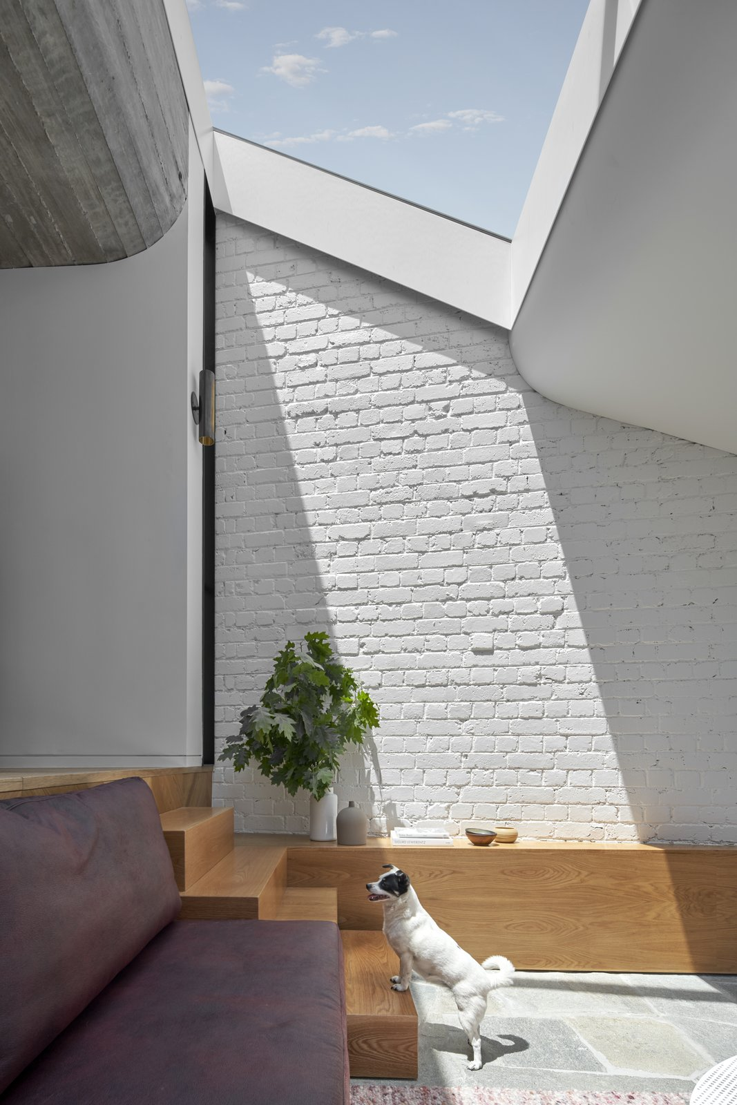 Fitzroy Terrace by Taylor Knights skylight in the sunken lounge living room