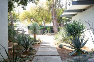 There is native, drought-resistant landscaping at the entrance.