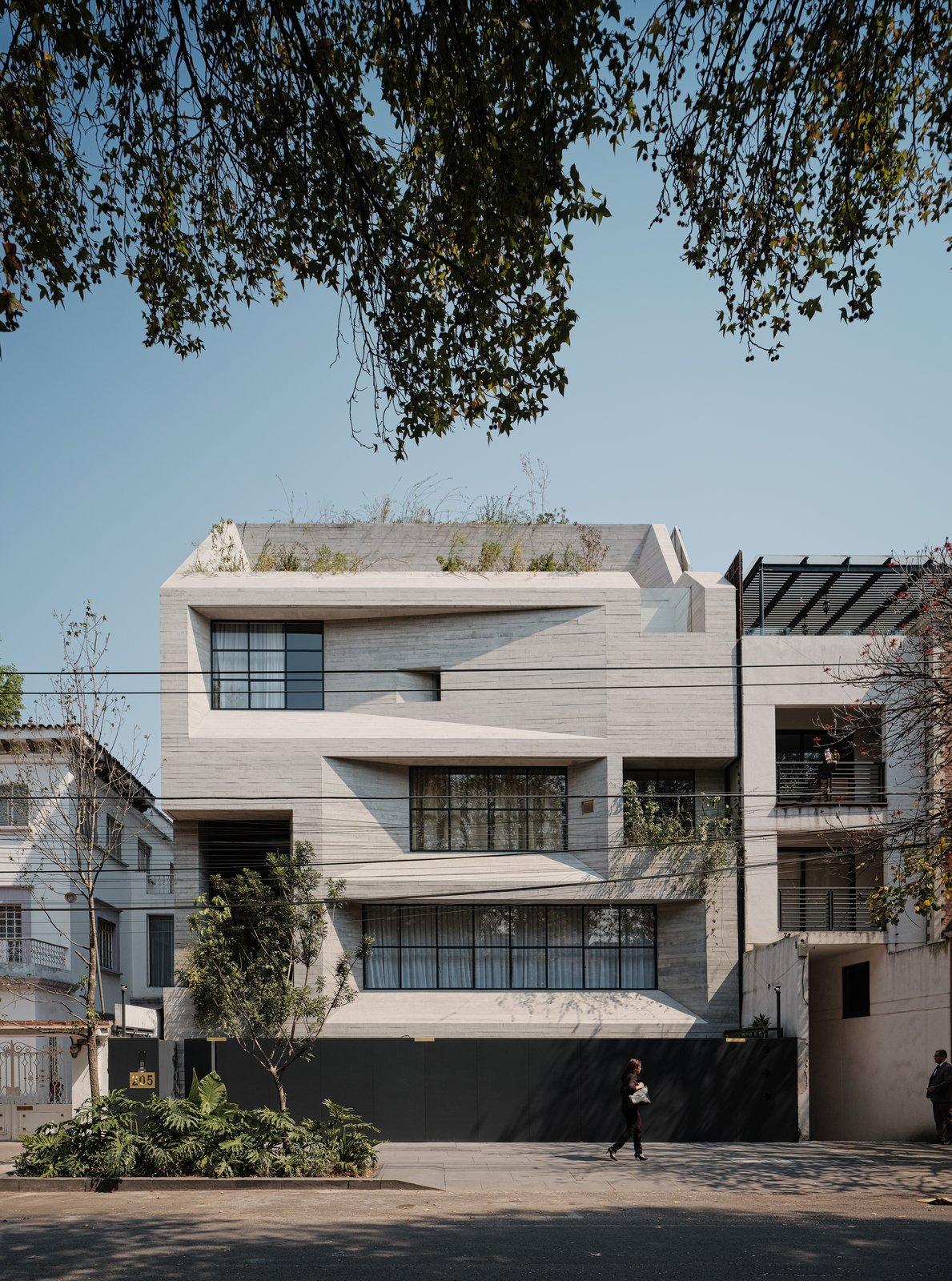 Tennyson 205 Rick Joy Polanco Apartment