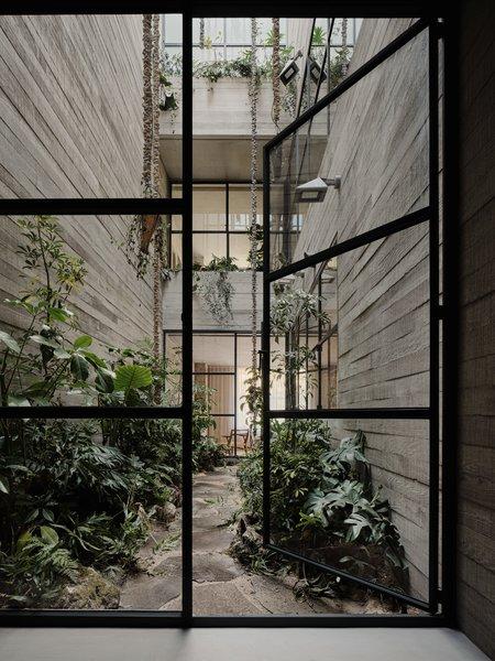 Tennyson 205 courtyard