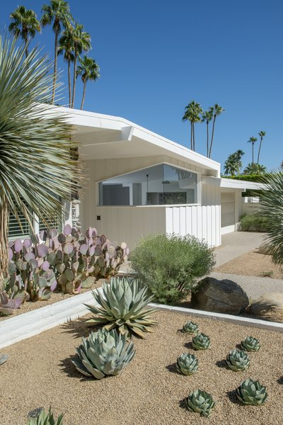 In addition to lovely native landscaping, the front entrance features crisp midcentury lines and a beautiful butted glass window.