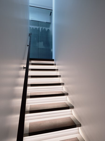 Custom-designed, concrete-and-walnut stairs that are lit from underneath by Concreteworks connect the bedroom floor to the lower garden floor.