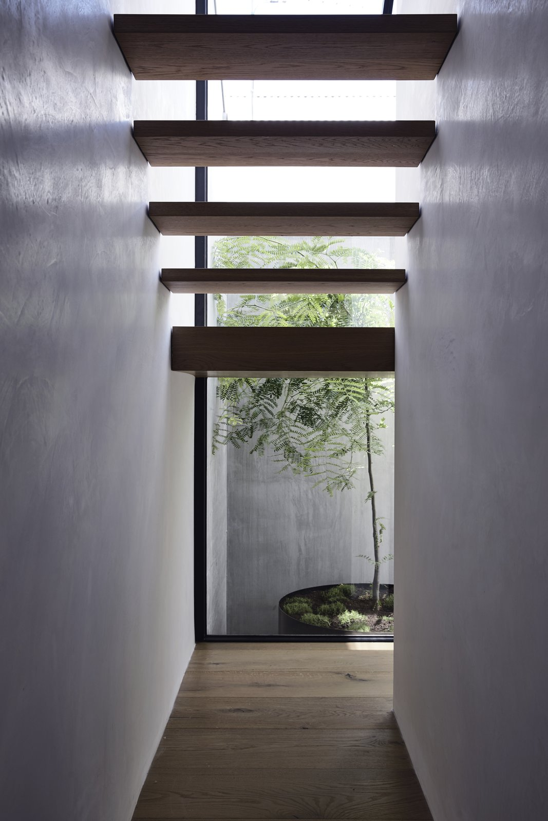 Scandizzo House Kennon+ stairs