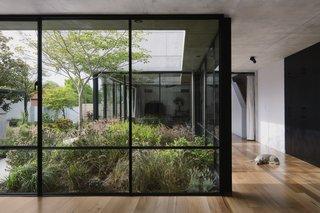 """全高窗户营造沿着走廊带来光明和绿化玻璃幕墙到几乎每一个空间。姐妹们最喜欢的家的一部分是餐厅,庭院和客厅之间的拉伸。一个空间,乔治说感觉就像她希望的那样。""""像房子吞没了一片花园,或者像花园里已经渗透了房子。"""""""