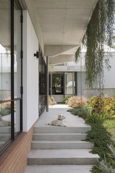 """""""My brother-in-law is an avid gardener, so pairing rooms with gardens, and experiencing the house as a series of spaces with different relationships to plants and trees, evolved naturally,"""" explains George."""