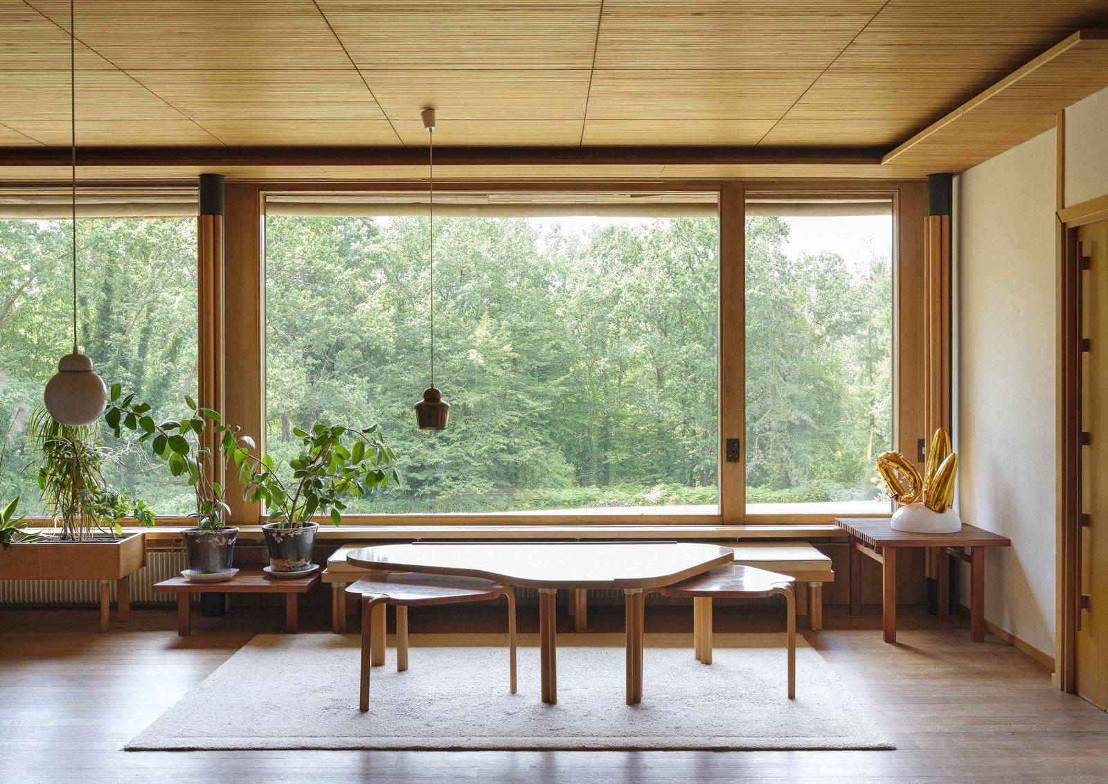 Alvar Aalto Maison Louis Carré  Call to the Wild (L'Appel de la Nature) Laura Laine,  Kustaa Saksi,  Kim Simonsson