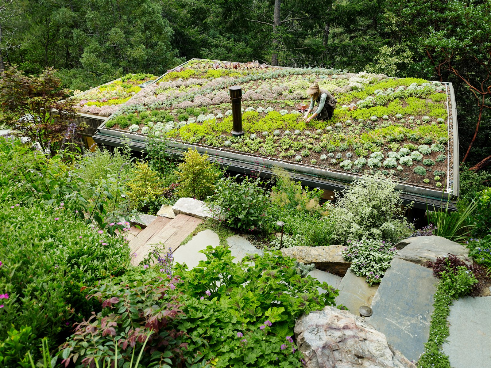 Outdoor, Walkways, Gardens, Garden, Rooftop, and Trees River-rock ballast was installed around the perimeter of the green roof.    Mill Valley Cabins by Feldman Architecture