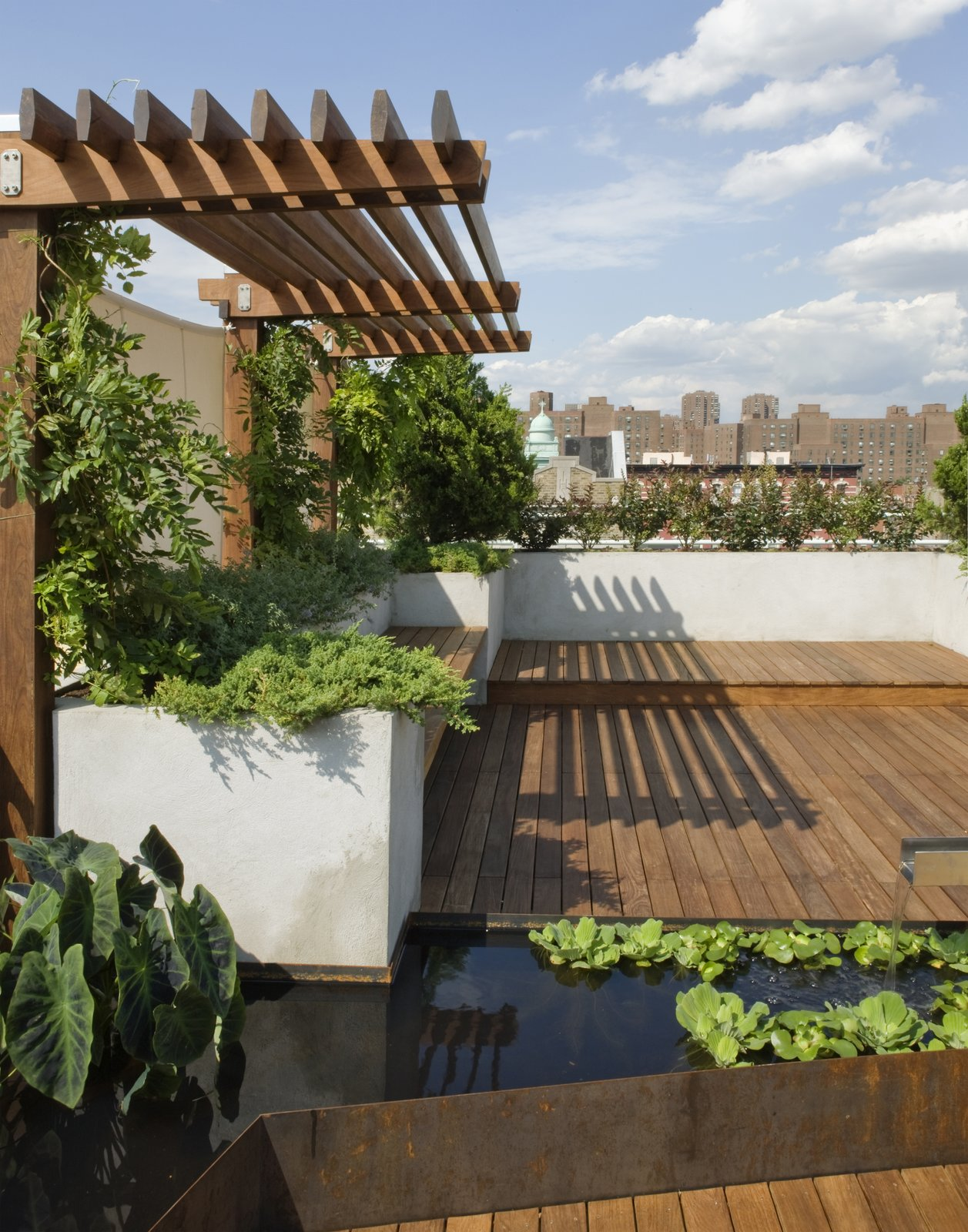 A view from the lower part of the roof deck.  The Cor-Ten water garden wraps around a custom Portland cement stucco planter.  East Village Roof Garden
