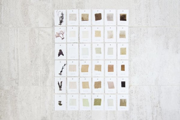 Studio Nienke Hoogvliet  Seaweed Yarn Naturally Dyed Swatches The process and research is documented in a book called SEAWEED RESEARCH  Material Spotlight: Algae