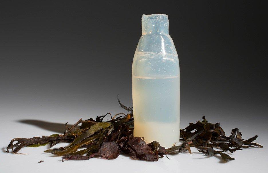 Ari Jónsson uses algae to create biodegradable water bottles  Material Spotlight: Algae