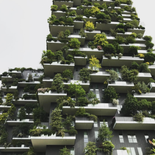 Bosco Verticale / Milan, Italy  in the Porta Nuova Isola area, as part of a wider renovation project led by Hines Italia.