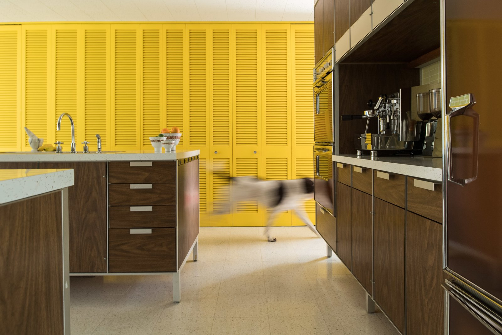 Kitchen and Terrazzo Floor Bright closet doors provide storage space and a healthy dose of color from various vantage points.  Photo 7 of 14 in A Rare Midcentury Prefab Looks Just Like it Did in 1958—Down to the Knoll and Paul McCobb Interiors