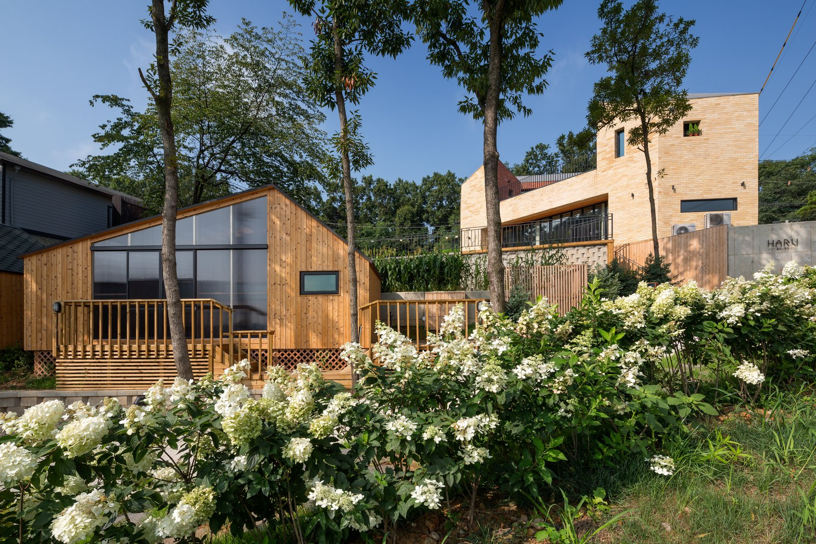 Outdoor, Front Yard, Trees, Shrubs, Flowers, Wood Patio, Porch, Deck, Wood Fences, Wall, and Grass A local nature enthusiast in the Gyeonggi province sets up a cafe and cabin retreat to combat a diminishing forest.   Designed to be in harmony with the surrounding forest, Haru is a cafe and camping complex by South Korean firm B.U.S Architecture. The architects collaborated with the owner, who was born and raised in the area and already had years of experience running a campsite, to define what an outdoor lifestyle meant to each of them—and determine how to best convey it through architecture.   On walks through the densely wooded landscape, they selected which trees would be preserved in order to create a sense of scale; in this sense, the pattern of the forest impacted the project from beginning to end.  Photo 2 of 11 in A Camping Village in South Korea Draws Inspiration From an Iconic Fairy Tale