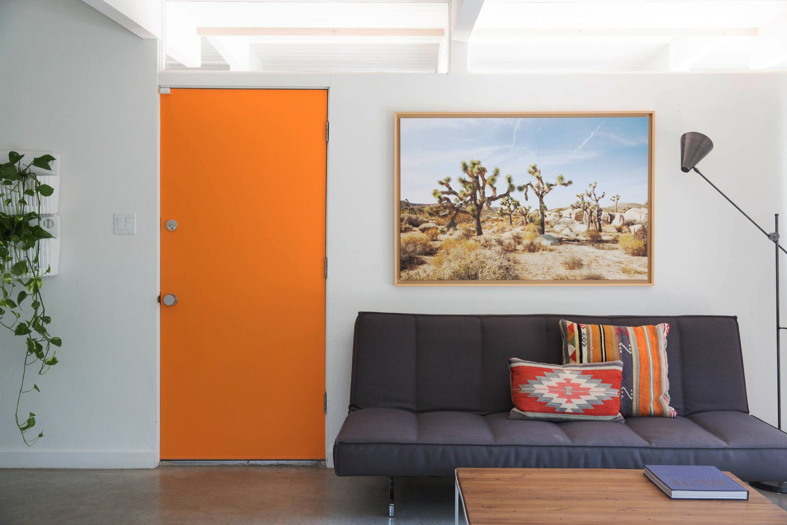 The Amado living area with mid century style and an orange door leading outdoors.