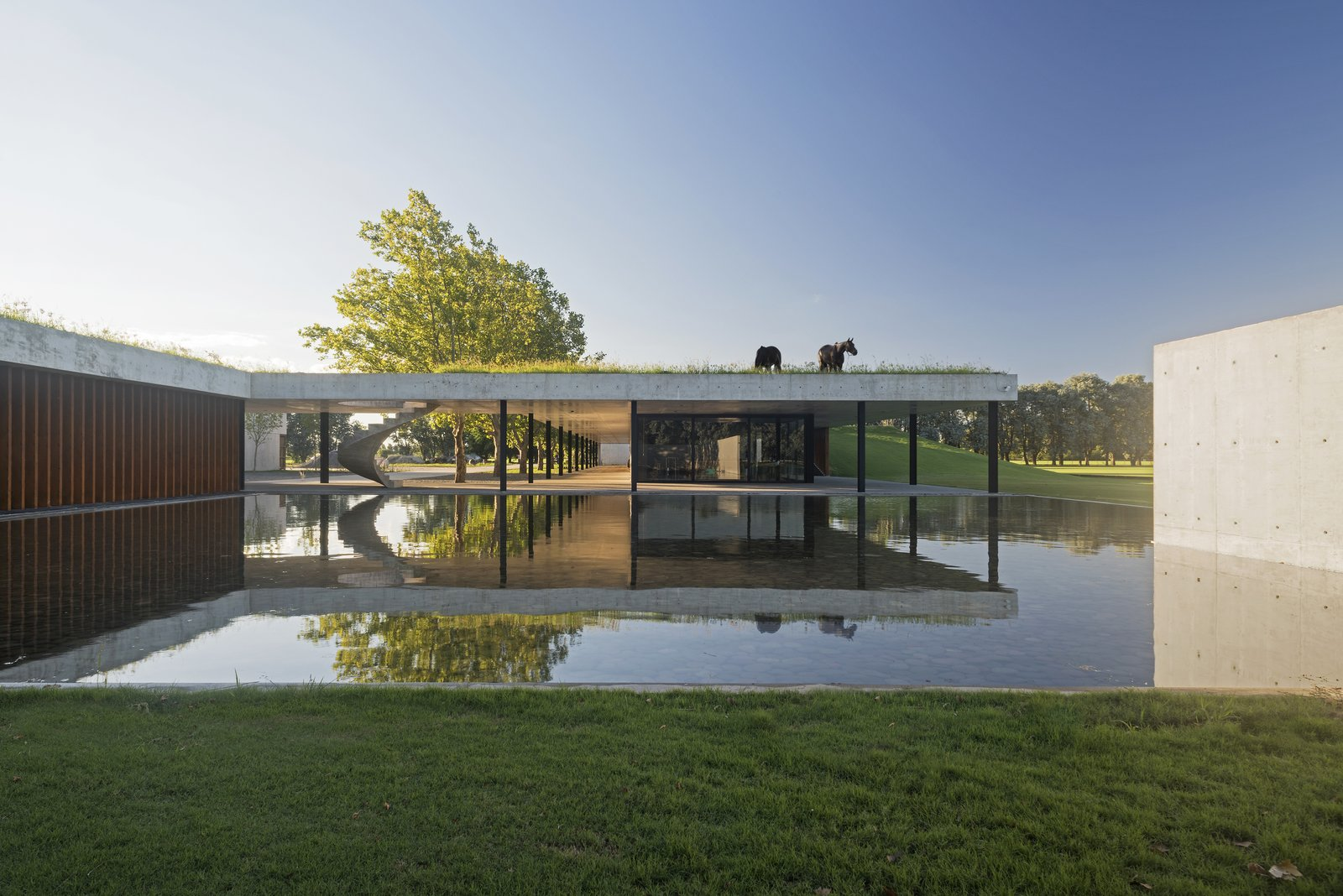 Outdoor, Grass, and Large Pools, Tubs, Shower Buenos Aires-based Estudio Ramos designs a concrete, wood, and iron stable that houses 44 prized horses and melds with the surrounding plains.  In central Argentina, the province of La Pampa is dominated by vast, grassy plains whose fertile soil supports myriad farms and ranches. Stretching out in all directions, the flatlands resemble an ocean in its sheer horizontality. When professional polo player Nacho Figueras—a champion of the sport and a longtime Ralph Lauren model—enlisted architect Juan Ignacio Ramos of Estudio Ramos to build a stable for 44 polo horses, the architect was sure to incorporate the region's meditative flatness into the design.  Photos from Celebrated Polo Player Nacho Figueras Commissions a Low-Slung, Concrete Stable