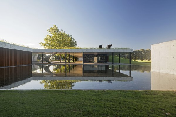 Celebrated Polo Player Nacho Figueras Commissions a Low-Slung, Concrete Stable