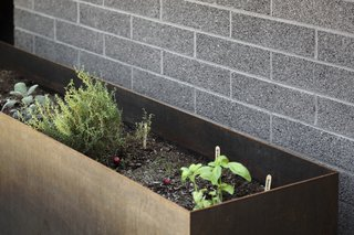 Cor-ten steel planter