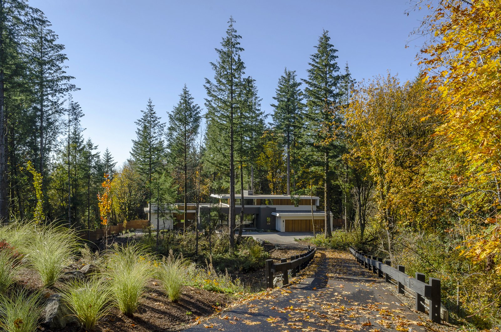 Exterior, Stucco Siding Material, Wood Siding Material, Flat RoofLine, and House Building Type Access to the site is provided by shared private road down to a small clearing between the protected trees and habitat.  Wildwood by Giulietti / Schouten AIA Architects