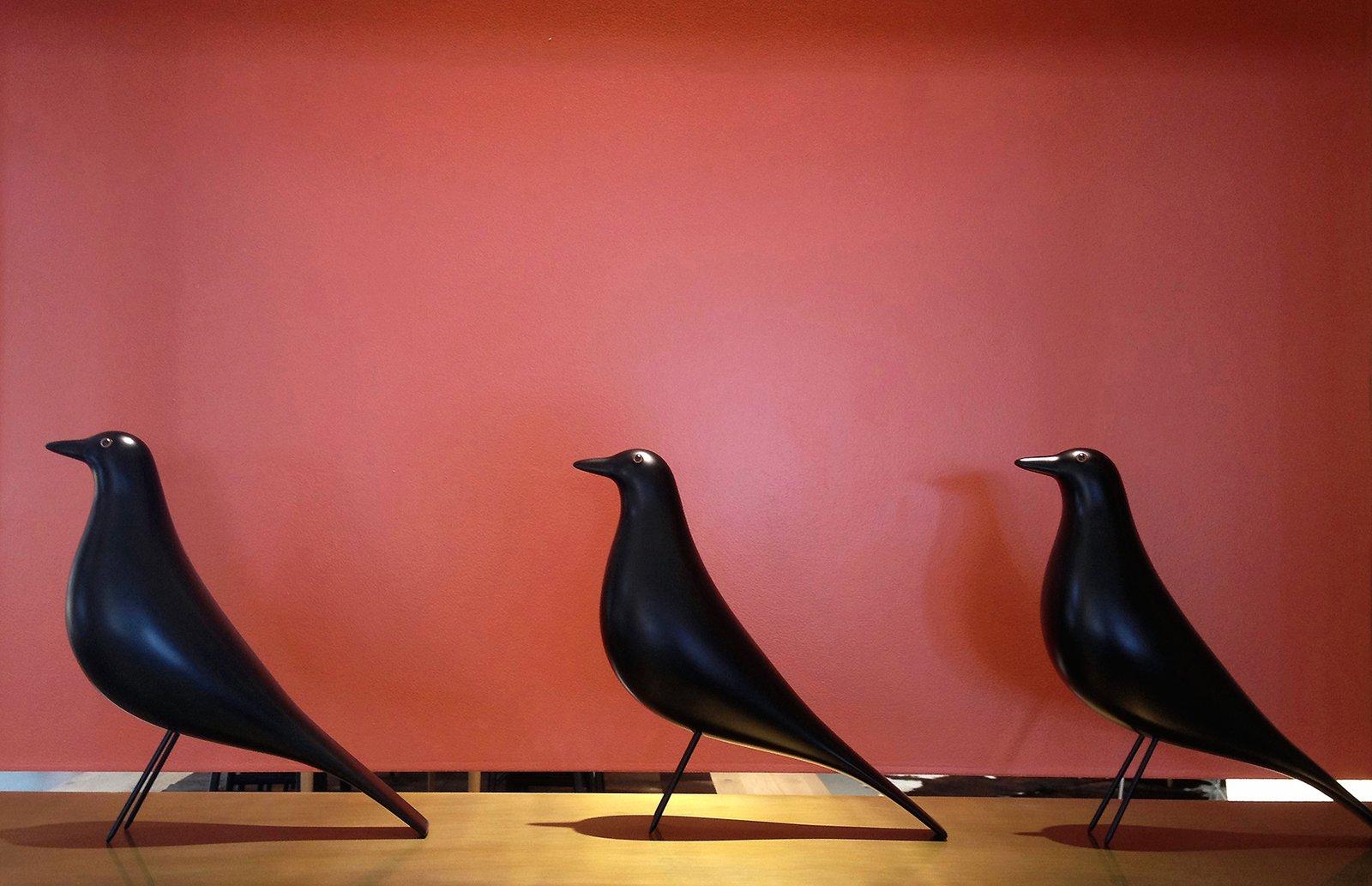 eames house bird(s)  Mid century modern