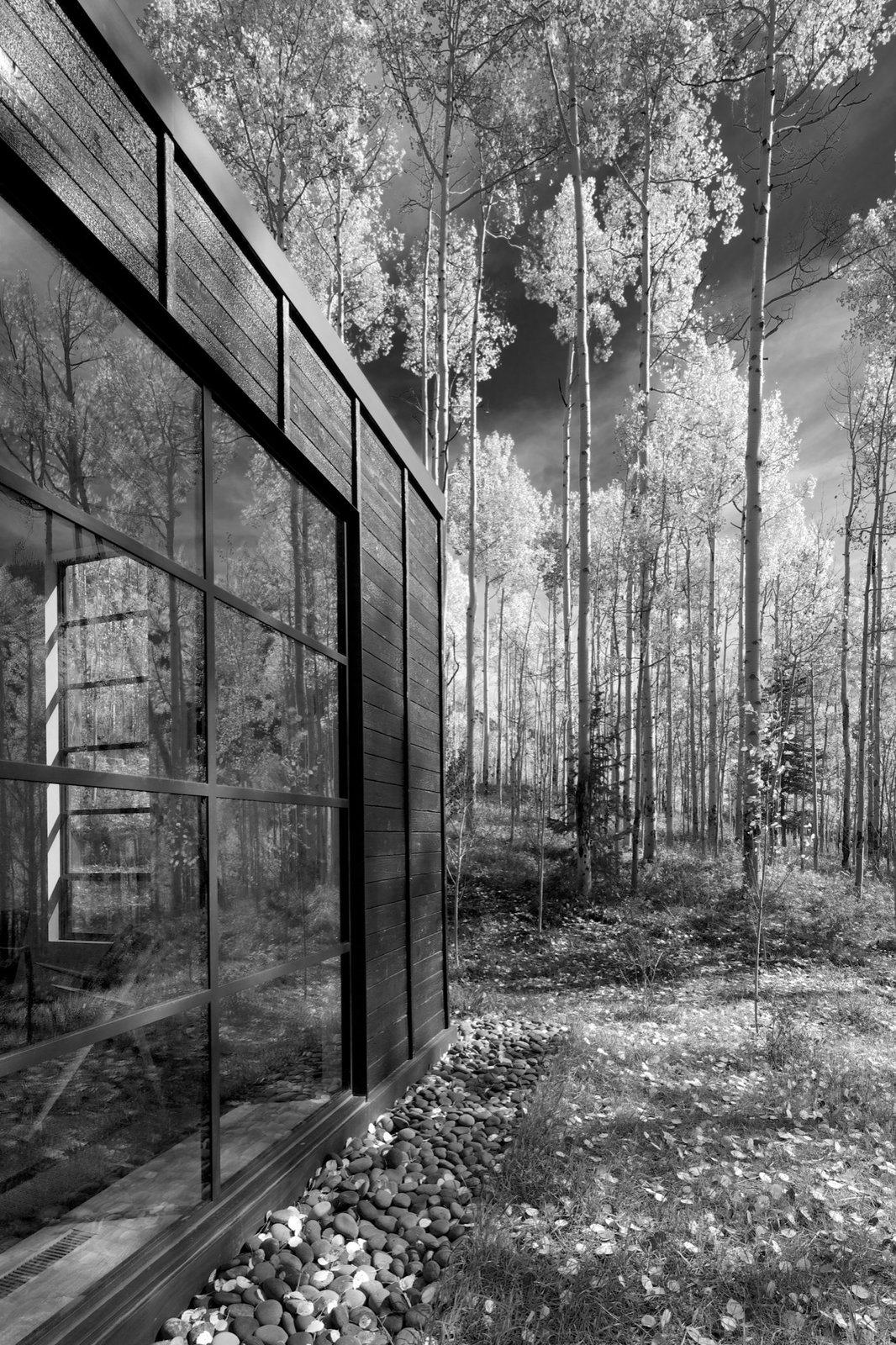 Exterior details reference the immense verticality of the aspen trees.  Photo 4 of 13 in Retreat in the Aspen Grove