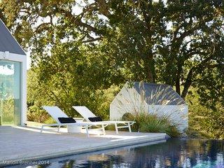 landscape, pool