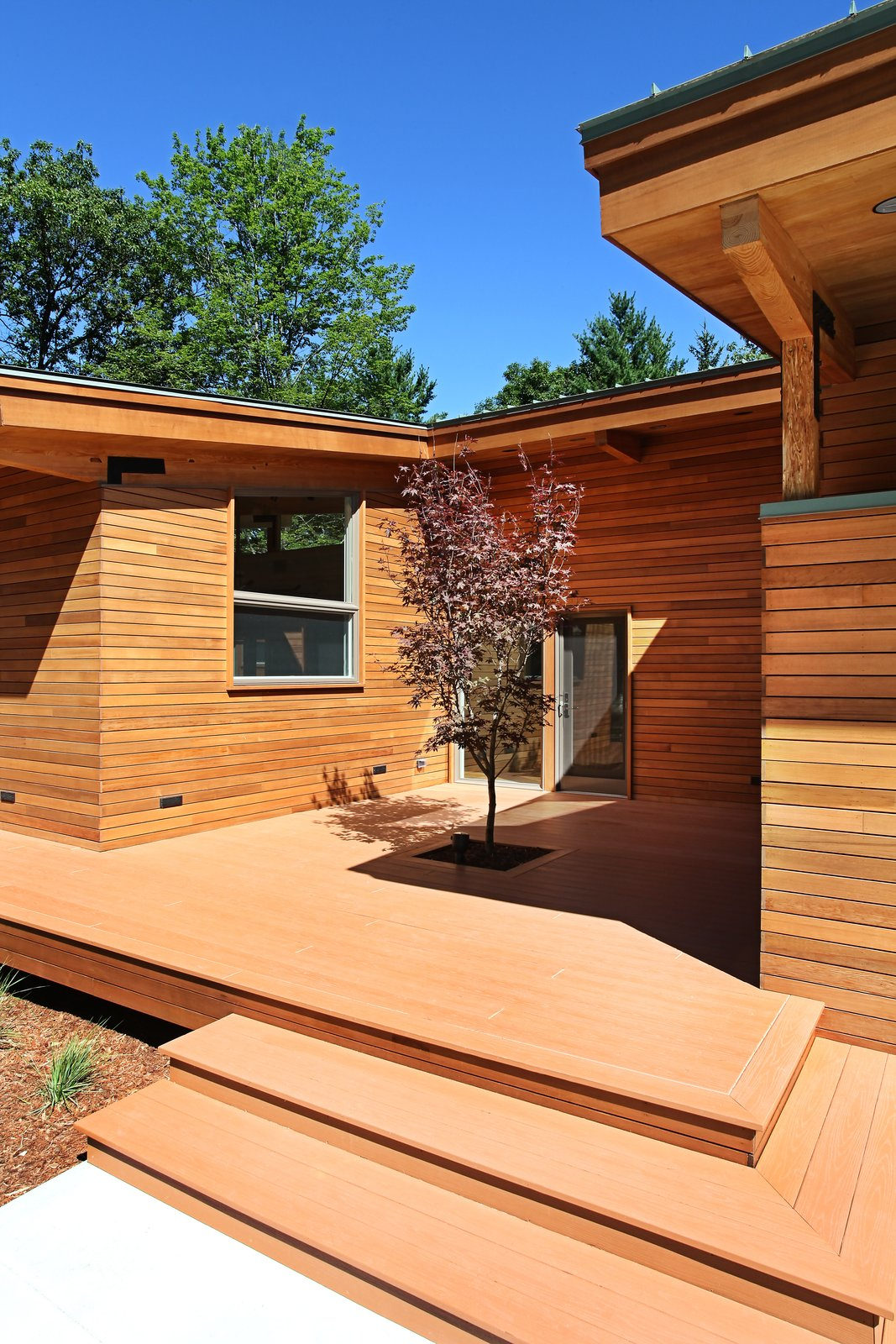 Entry courtyard with tree  Higgins Lake House by Jeff Jordan Architects