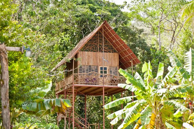There is round-the-clock access to natural hot and cold springs right on the premises. Need we say more? If you love hiking in a tropical setting, then this tree house is the one for you.  Photo 2 of 7 in 7 Breathtaking Tree Houses You Can Actually Rent on Airbnb
